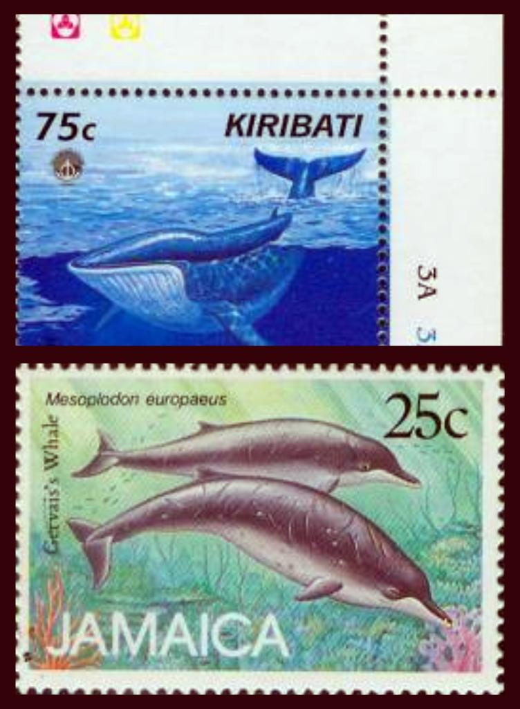 Whales on stamps kiribati jamaica