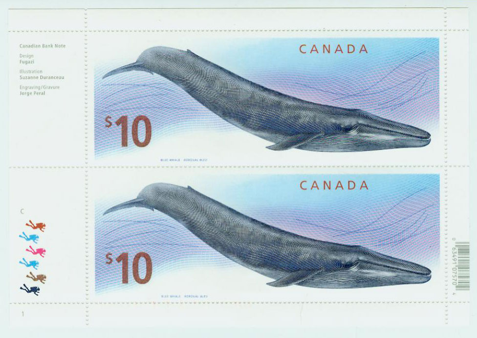 Blue Whale Rorqual Bleu $10 Canadian Stamp Baleines