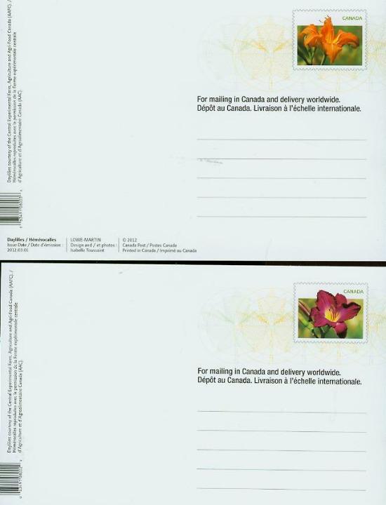 Daylilies Prepaid Postcards
