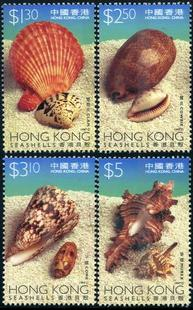Hong Kong Shells