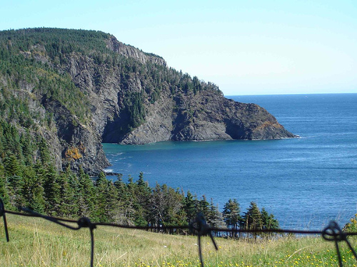 Gallows Cove - East Coast Trail - Newfoundland